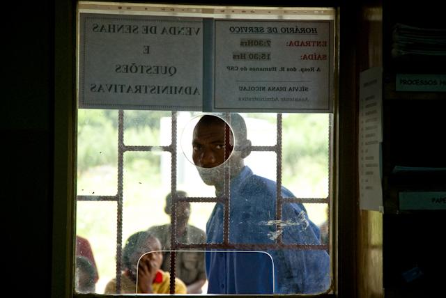 pasiagem nos arredores de lichinga, moambique