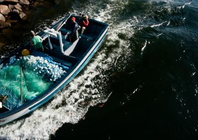 pescaTainha-15-20120613-_DSC4945